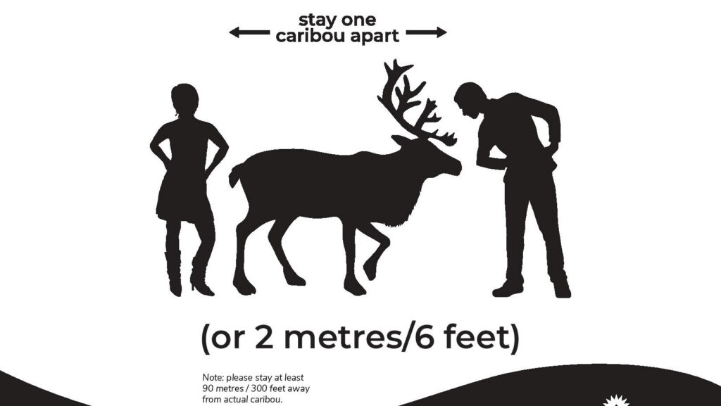Poster of two people standing on opposite sides of a caribou